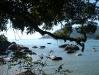 Uferszene in Abraao